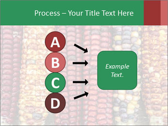 Indian colored corn PowerPoint Templates - Slide 94