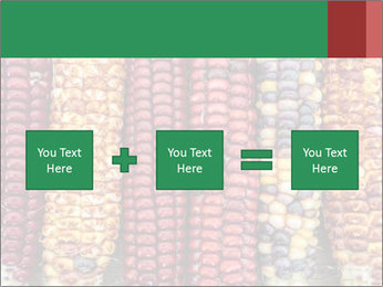 Indian colored corn PowerPoint Templates - Slide 95