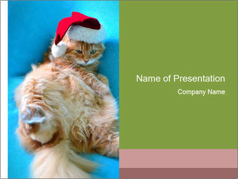 Funny lazy red cat in Santa Claus hat PowerPoint Template - Slide 1