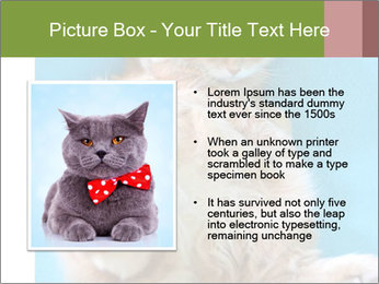 Funny lazy red cat in Santa Claus hat PowerPoint Template - Slide 13