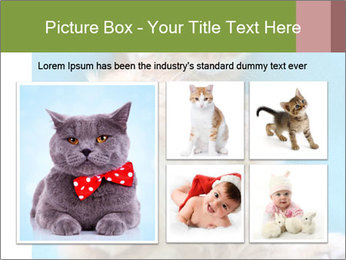 Funny lazy red cat in Santa Claus hat PowerPoint Template - Slide 19