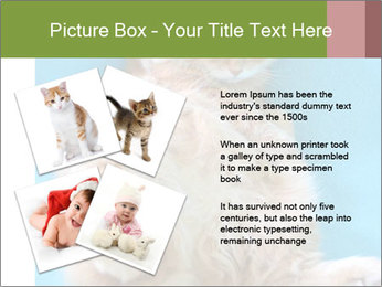 Funny lazy red cat in Santa Claus hat PowerPoint Template - Slide 23