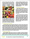 0000088337 Word Template - Page 4