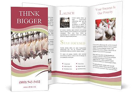 0000088357 Brochure Templates