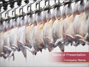 Food industry detail with poultry meat processing PowerPoint Templates - Slide 1