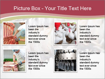 Food industry detail with poultry meat processing PowerPoint Templates - Slide 14