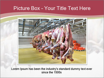 Food industry detail with poultry meat processing PowerPoint Templates - Slide 15