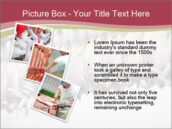 Food industry detail with poultry meat processing PowerPoint Templates - Slide 17
