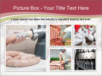 Food industry detail with poultry meat processing PowerPoint Templates - Slide 19