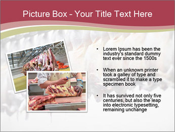 Food industry detail with poultry meat processing PowerPoint Templates - Slide 20