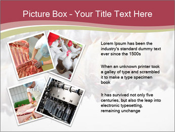 Food industry detail with poultry meat processing PowerPoint Templates - Slide 23