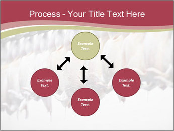 Food industry detail with poultry meat processing PowerPoint Templates - Slide 91