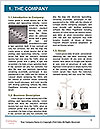 0000088367 Word Template - Page 3
