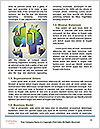 0000088367 Word Template - Page 4