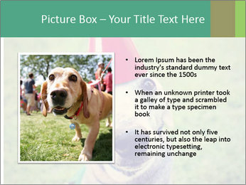 A cute dog in a local park with a birthday PowerPoint Templates - Slide 13