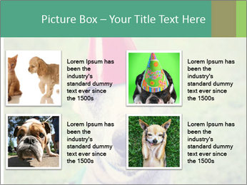 A cute dog in a local park with a birthday PowerPoint Templates - Slide 14