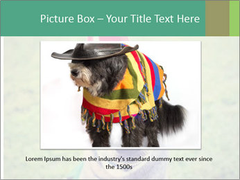 A cute dog in a local park with a birthday PowerPoint Templates - Slide 15