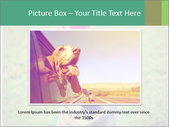 A cute dog in a local park with a birthday PowerPoint Templates - Slide 16