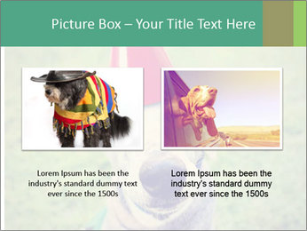 A cute dog in a local park with a birthday PowerPoint Templates - Slide 18