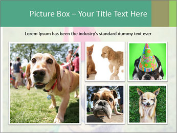 A cute dog in a local park with a birthday PowerPoint Templates - Slide 19