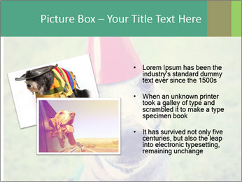 A cute dog in a local park with a birthday PowerPoint Templates - Slide 20