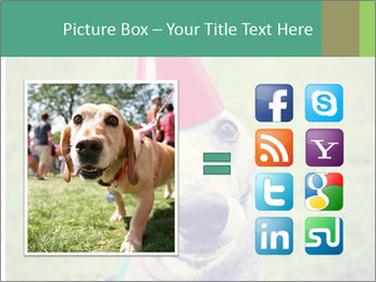 A cute dog in a local park with a birthday PowerPoint Templates - Slide 21