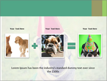 A cute dog in a local park with a birthday PowerPoint Templates - Slide 22