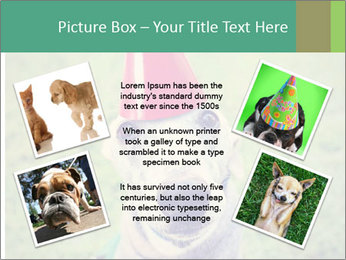A cute dog in a local park with a birthday PowerPoint Templates - Slide 24