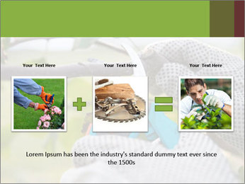 Pruning fruit trees by pruning shears PowerPoint Template - Slide 22