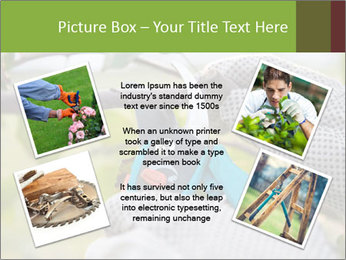 Pruning fruit trees by pruning shears PowerPoint Template - Slide 24