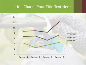 Pruning fruit trees by pruning shears PowerPoint Templates - Slide 54