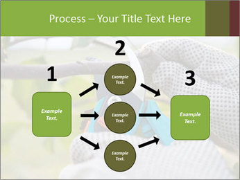 Pruning fruit trees by pruning shears PowerPoint Templates - Slide 92