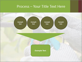 Pruning fruit trees by pruning shears PowerPoint Templates - Slide 93