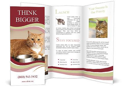 0000088385 Brochure Template