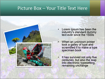 Crocuses in Chocholowska valley PowerPoint Template - Slide 20