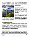 0000088402 Word Template - Page 4