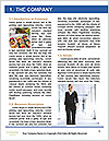 0000088403 Word Template - Page 3
