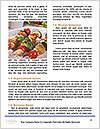 0000088403 Word Template - Page 4