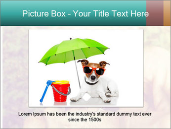 A cute chihuahua with a mustache finger in front of him done PowerPoint Templates - Slide 15