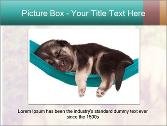 A cute chihuahua with a mustache finger in front of him done PowerPoint Templates - Slide 16