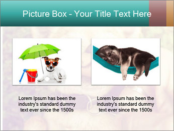 A cute chihuahua with a mustache finger in front of him done PowerPoint Templates - Slide 18