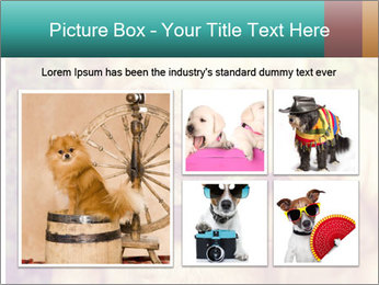 A cute chihuahua with a mustache finger in front of him done PowerPoint Templates - Slide 19