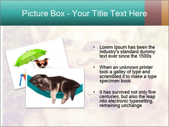 A cute chihuahua with a mustache finger in front of him done PowerPoint Templates - Slide 20