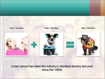 A cute chihuahua with a mustache finger in front of him done PowerPoint Templates - Slide 22