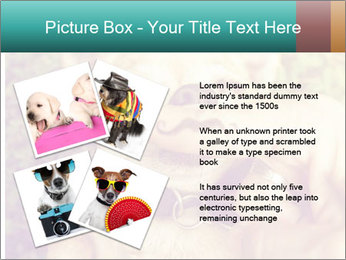 A cute chihuahua with a mustache finger in front of him done PowerPoint Templates - Slide 23