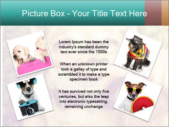 A cute chihuahua with a mustache finger in front of him done PowerPoint Templates - Slide 24