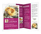 0000088421 Brochure Templates