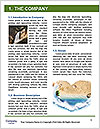 0000088426 Word Template - Page 3
