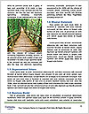 0000088426 Word Template - Page 4