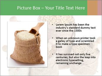 Corn kernel seed meal and grains in bags collection PowerPoint Template - Slide 13